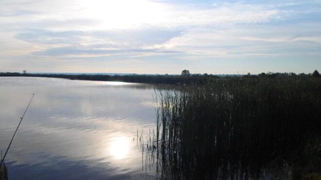 Бурение скважин на воду в селе Бородянка